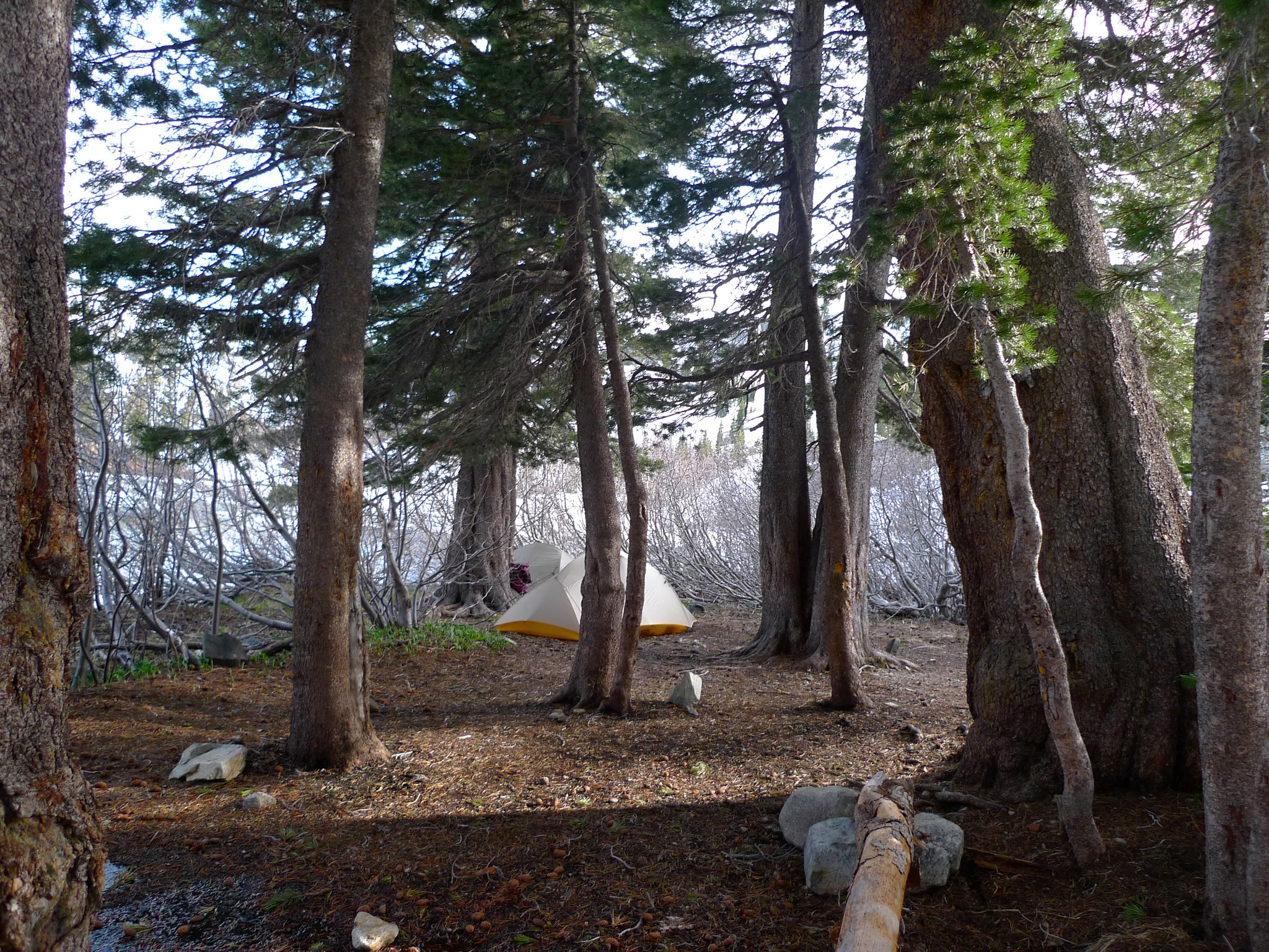 Camp 1 at Heather Lake