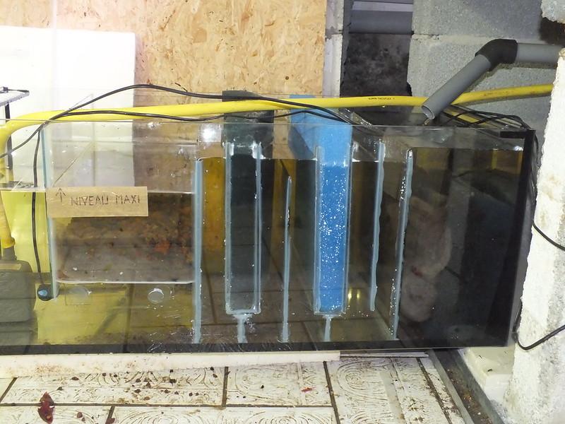 Projet de d cante externe un probl me avec votre for Pompe externe aquarium