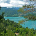 Small photo of Lade Bled