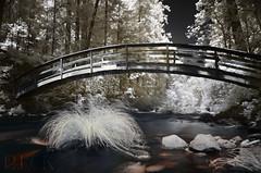 Bridge Over Water (Infrared)