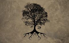 fullfamilytree.com