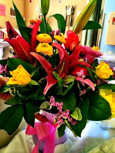 The flowers I sent Jenai in the hospital. Photo by Jenai.