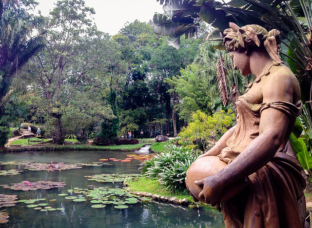 rio de janeiro Jardim Botanico