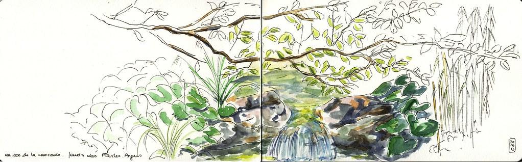 Petite cascade au Jardin des plantes