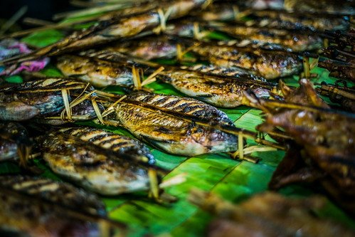 Laung Prabang night market - fish