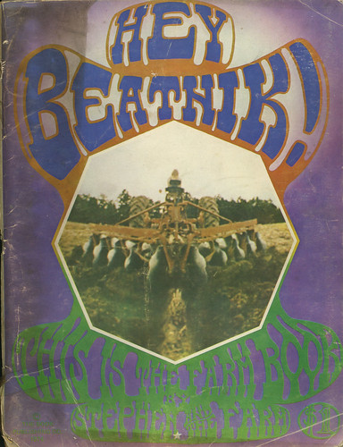 Hey Beatnik book cover