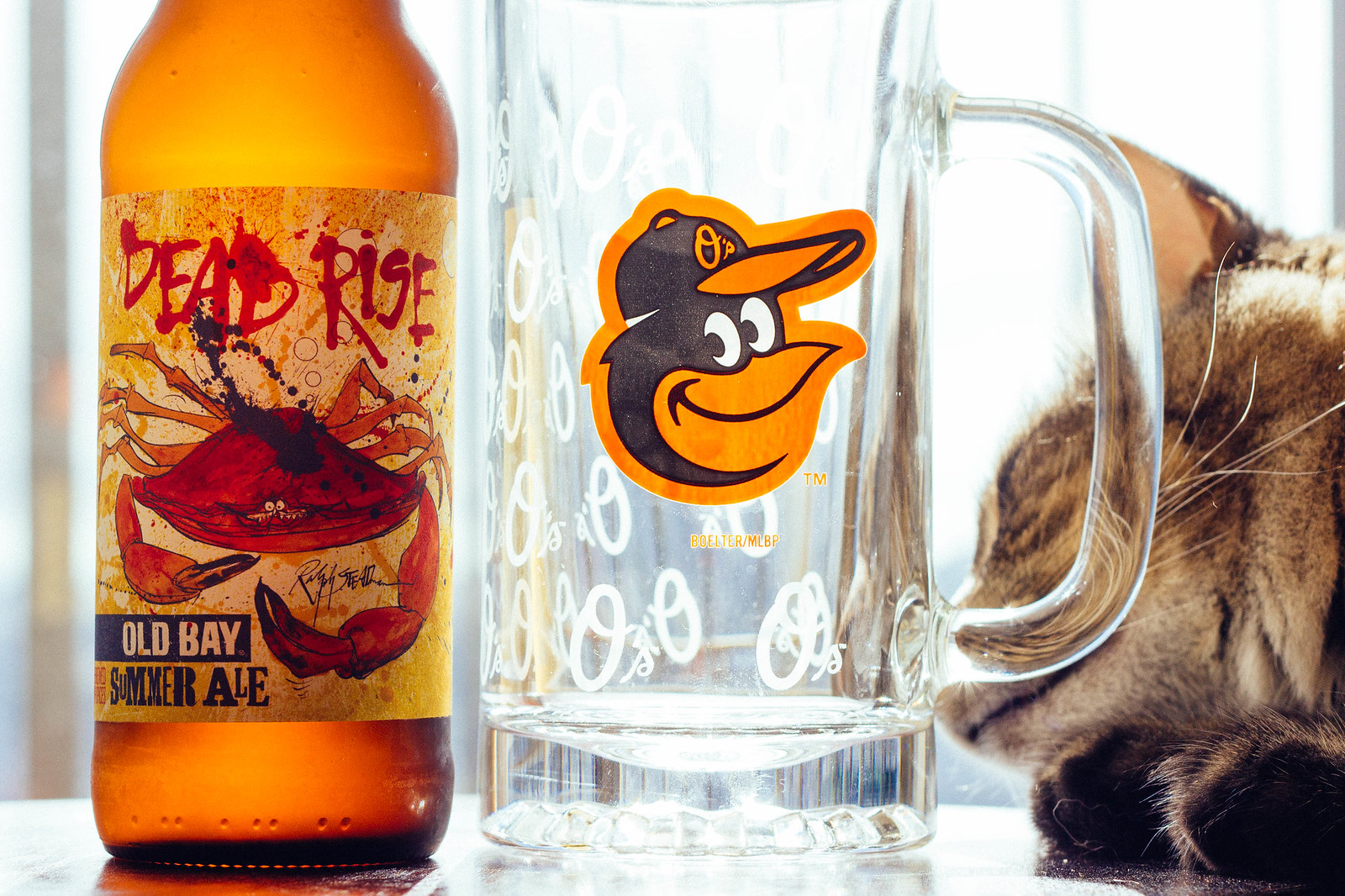 Willow investigates Flying Dog's Dead Rise Old Bay Summer Ale