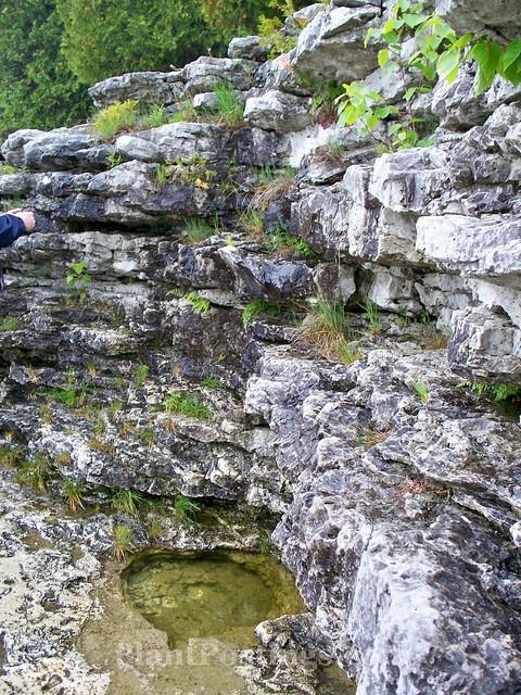 cavepoint2