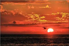Sunset at Treasure Island