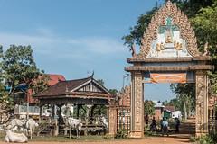 20161228 Cambodia 04984 2