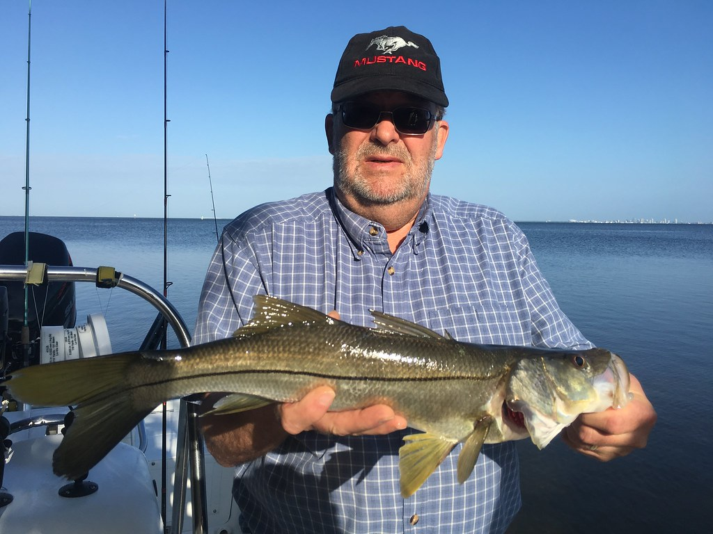 Snook Tampa Guide 813-245-4738