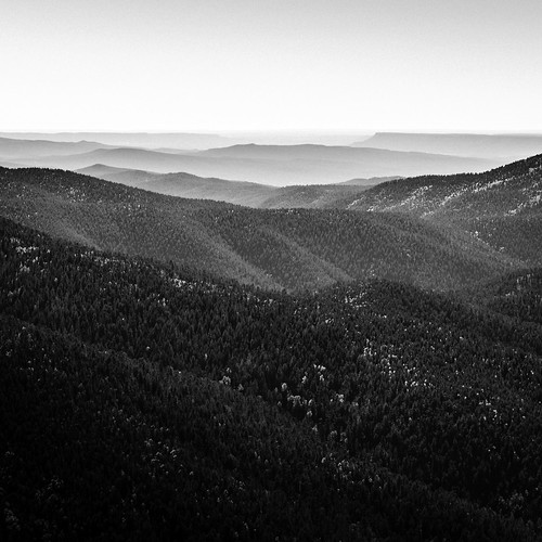 2016 h5d50c hasselblad mabrycampbell newmexico october santafe santafecounty santafenationalforest usa unitedstatesofamerica above aerial aerialphotography autumn blackandwhite commercialphotography fall fineart fineartphotography forest image landscape monochrome mountains photo photograph photographer photography squarecrop trees f63 april 2015 april152015 20150415h6a5118 24mm 50sec 100 tse24mmf35lii fav10 fav20 fav30