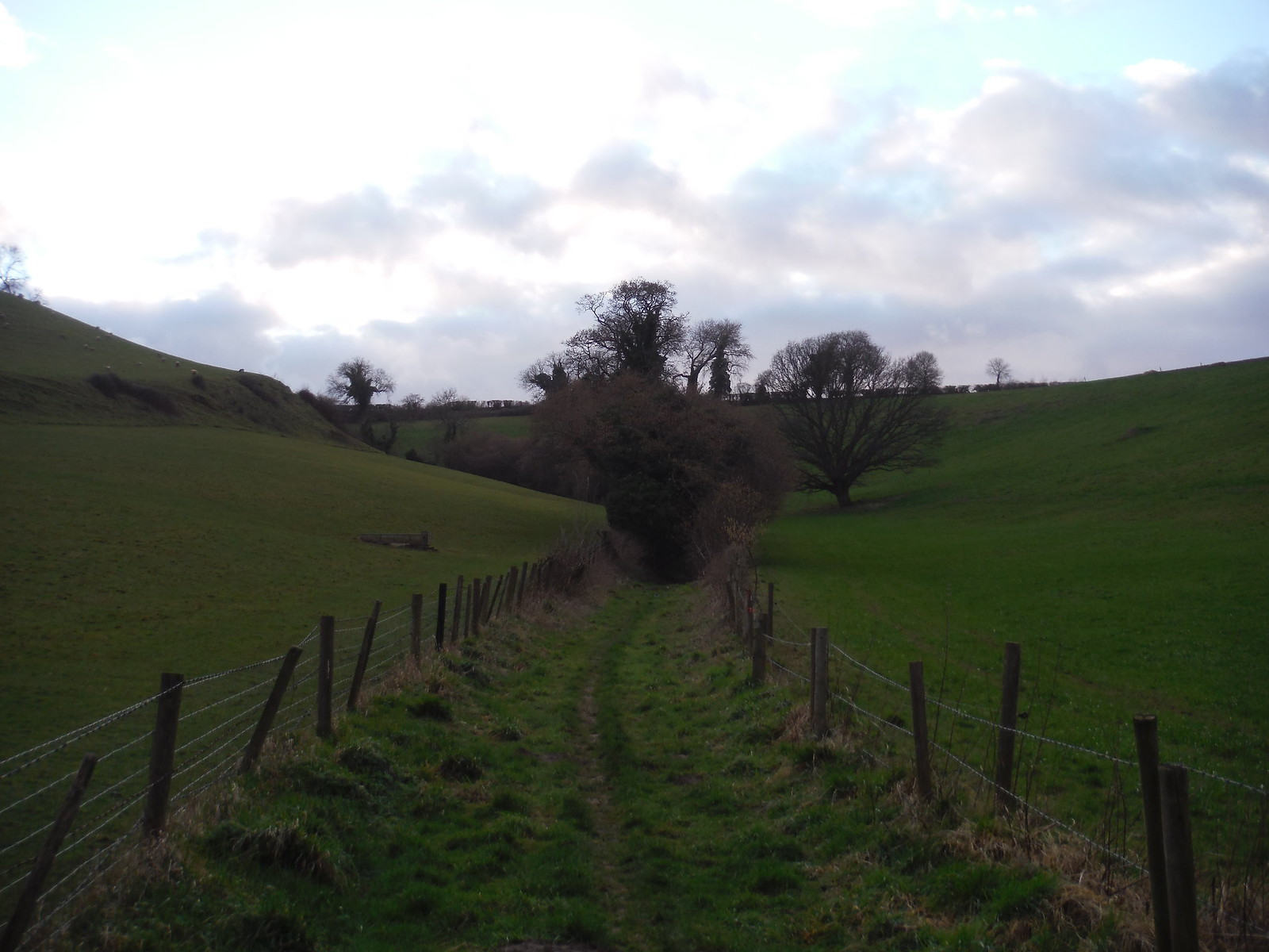 Ascent Route up to Ridge Lane SWC Walk 284 Bruton Circular (via Hauser & Wirth Somerset) or from Castle Cary