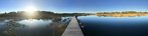 lake sø zee sunset sonnenuntergang hiking trekking søhøjlandet trees træer sky himmel silkeborg water river landscape flod gudenå gudenåen riverguden fluss
