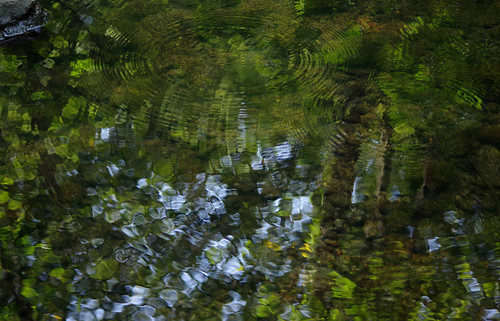 pentax k3 vbd smcpentaxda55300mmf458ed ct connecticut water newengland reflection river waterbugs 2016 summer2016 pequonnockriver stream oldminepark trumbull