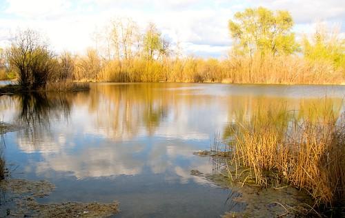 helenahelena montanalakesmontanaparksspringmeadowlakestateparkstateparkswater