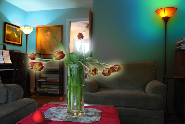 Another Look, Into the Light, Tulips and Living Room with Red Ball, May 16, 2014 9-10 full bpx