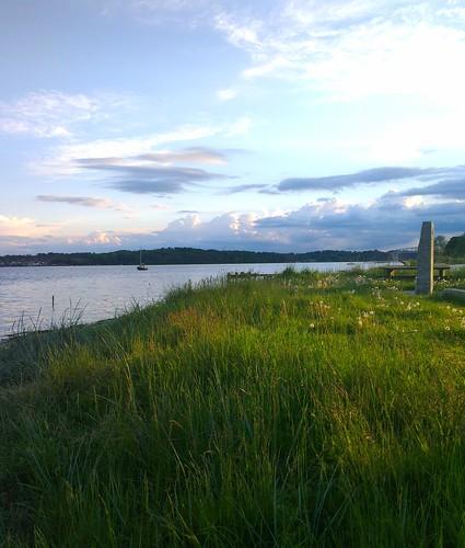 ocean sea beautiful grass denmark view summernight snoghøj
