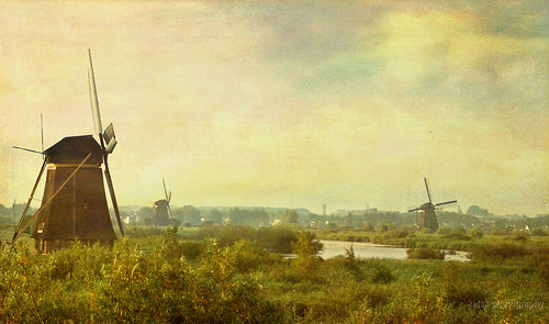 early morning Kinderdijk