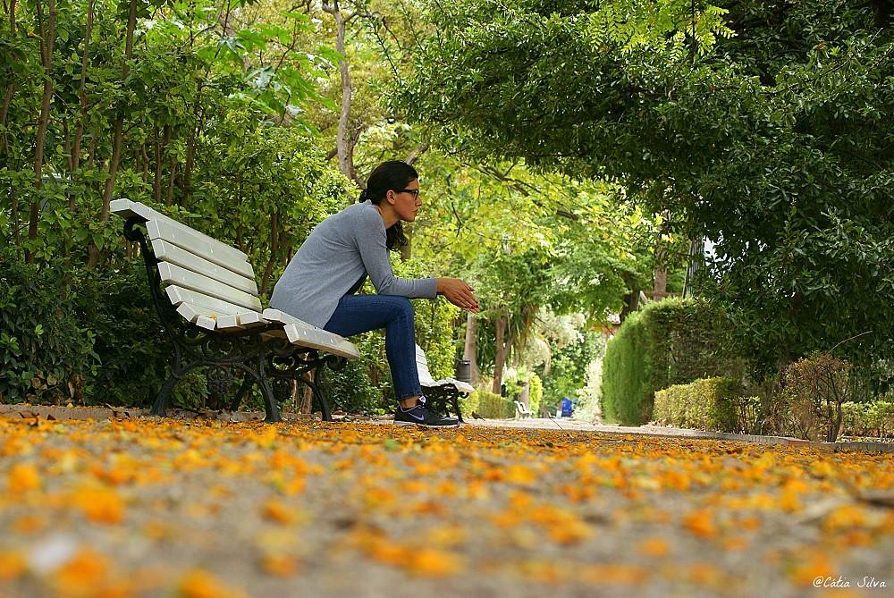 Jardin Botánico de Valencia (15)