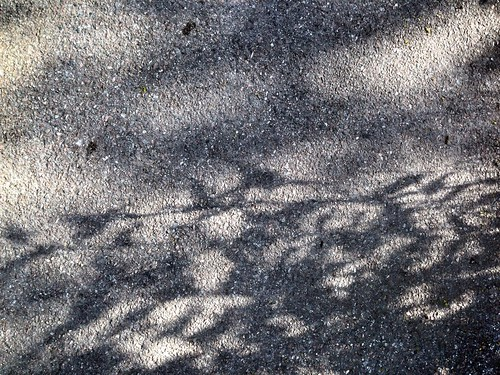 Shadows - Project 365 / 133