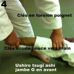 20 Techniques de JJ : 2ème serie Ceinturage : Technique C) Yoko Dori / Ceinturage de tête