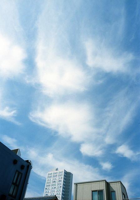 「薫風」 ソラヲワタル #224 かず