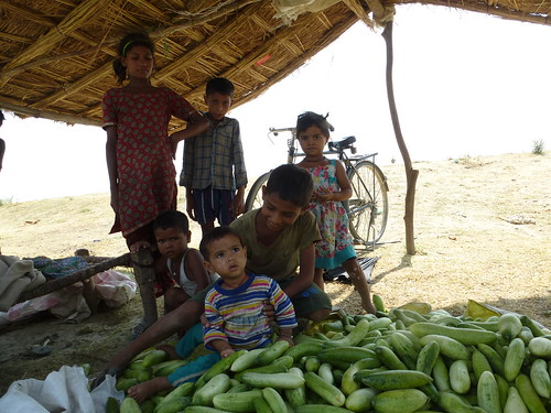 Rubeena's children pose near their cucumber harvest.