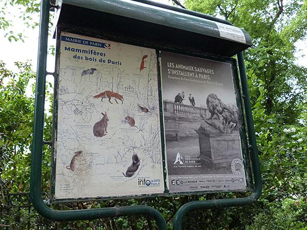 animaux parisiens