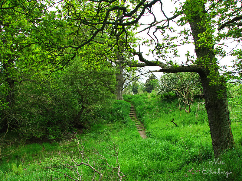 Los bosques de Roslin Glen y la capilla de Rosslyn