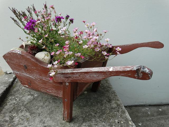Virágokkal teli talicska