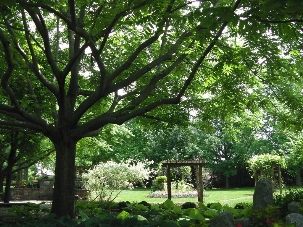 Ombre et lumière ** | Une visite au Jardin Daniel A. Segu… | Flickr