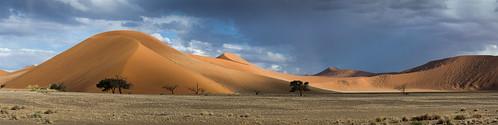 red panorama nikon dunes dune ripples namibia namib d600 namibdesert naukluft reddune namibnaukluft namibnaukluftnationalpark nikond600 namibnaukluftnp