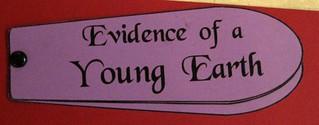 """Young Earth"" Fan Fold Book"