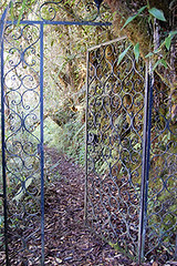 Who brought this ornate gate to guard this remote trail?