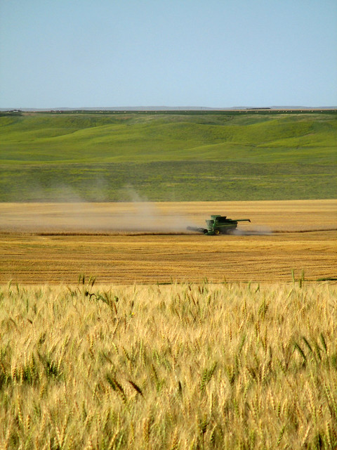 A birds eye view of the combine