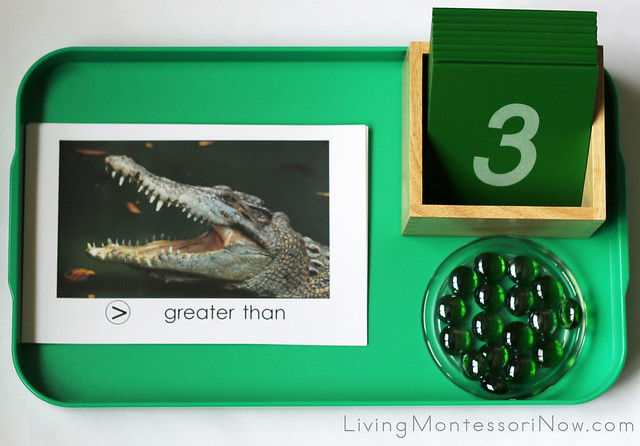 Greater Than Less Than Alligator - Sandpaper Number Tray