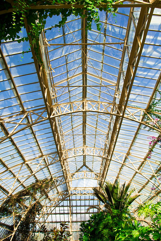 Botanical Conservatory_21