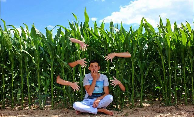 Alexandr Tikki - Children of the Corn