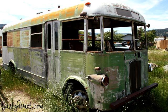 Montana Elkhorn Van 1_feistyharriet_July 2014