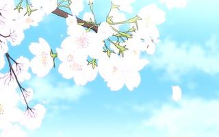 Noragami OVA 2 Image 4