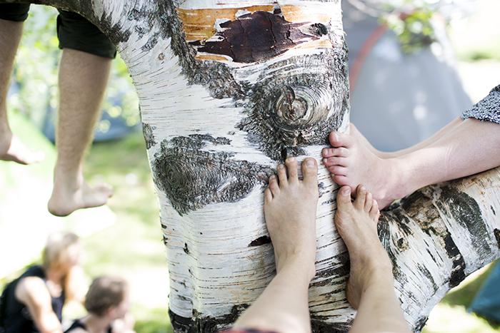 jalkojapuussa