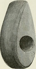 "Image from page 193 of ""The ancient stone implements, weapons, and ornaments, of Great Britain"" (1872)"