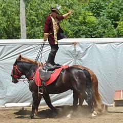 DuPage County Fair 2014