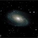 Messier 81 – Bode's Galaxy in Ursa Major