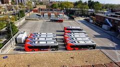 WMATA Metrobuses at Western Division
