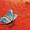 Borboleta. #baterfly #streetart #grafitti #curtaniteroi #niteroi #inganiteroi #mobgraphia #everedaybrasil #everydayeverywhere #everydaylatinamerica #red