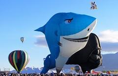 Shark & Darth