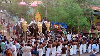 Thiruvullakkavu Sree Dharma Sastha Temple 2