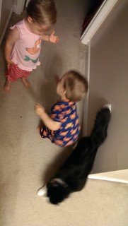 Eliza and Elliott trying to give Josie some treats